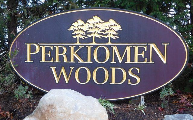 Perkiomen Woods –